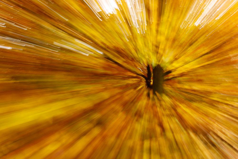photoblog image mg 4888w.jpg